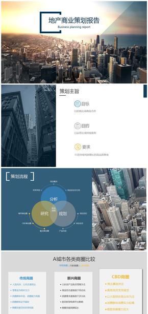 房地产项目业态策划分析模板