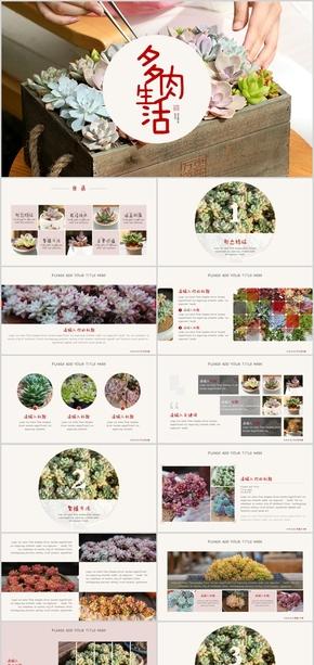 绿色多肉植物清新艺术展示PPT模板