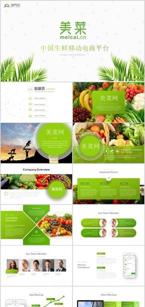 美菜网移动蔬菜电商商业计划书工作总结PPT模板