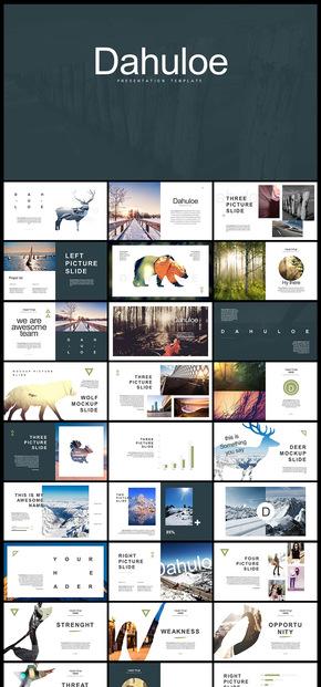 欧美风简约创意动物剪影摄影摄像电子宣传画册企业宣传册PPT模板