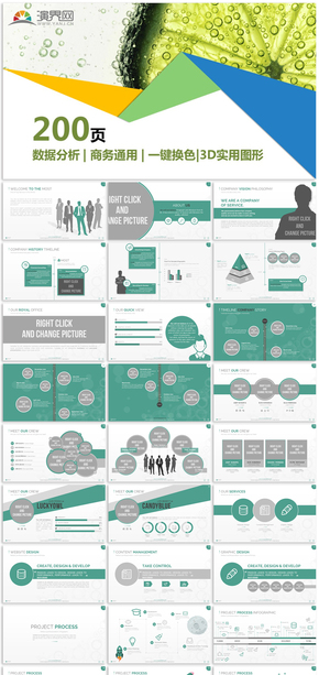 数据分析商务通用信息图表合集模板12