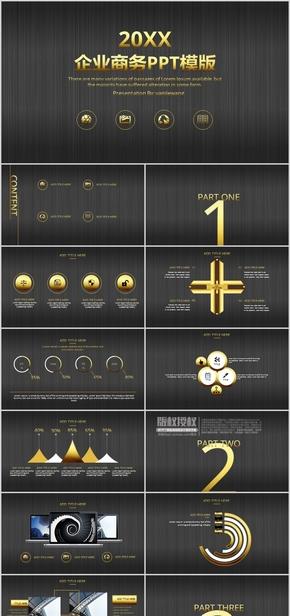 黑金系列PPT—企业商务总结计划PPT模板1