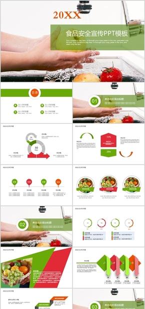 绿色食品安全健康教育总结计划PPT模板