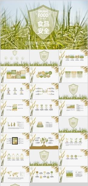 小清新绿色麦子食品安全第一PPT模板