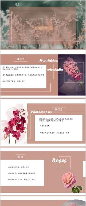 小清新宣传画册PPT模版