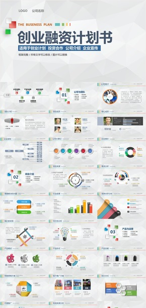 多彩—商业创业融资计划书PPT模板